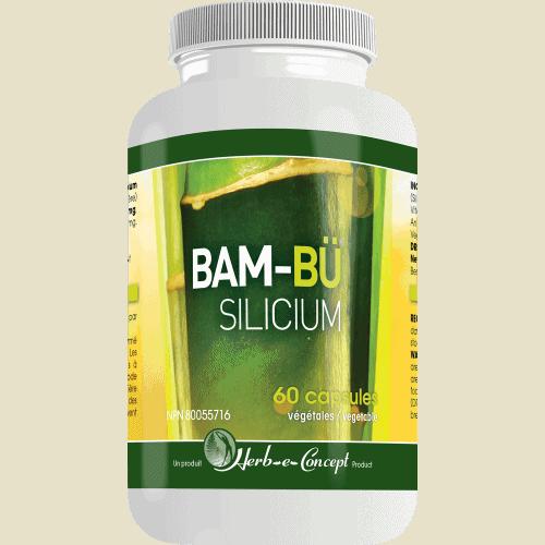 Bam-Bü Silicium